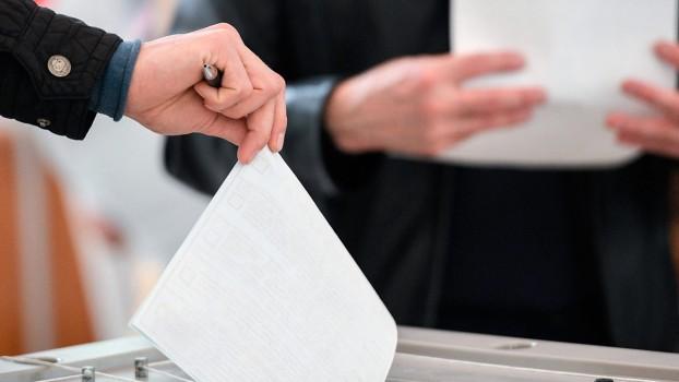 Информация о голосовании